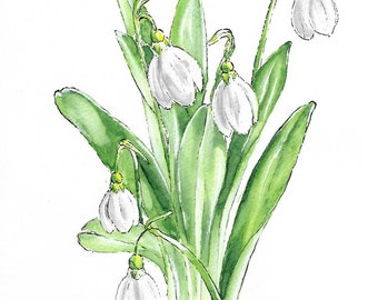 "Original Snowdrop Flower Watercolor ""Mantra Flora"" Print"