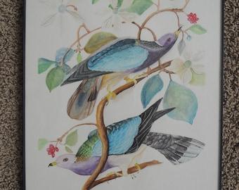 Bird Watercolor Inspired by Audubon