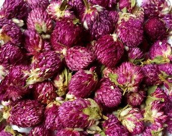 Globe Amaranth - 1 oz - Gomphrena Globosa - Organic Dried Flowers