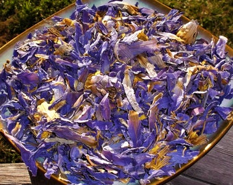Nymphaea caerulea Natural Organic Wicca Herb Egyptian Blue Lotus Dried Flower