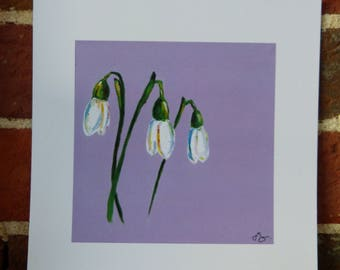 Snowdrops on purple - 20cm x 20cm print