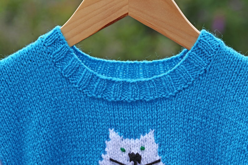 Sweater with White Cat Motif Knitting Pattern to fit a | Etsy