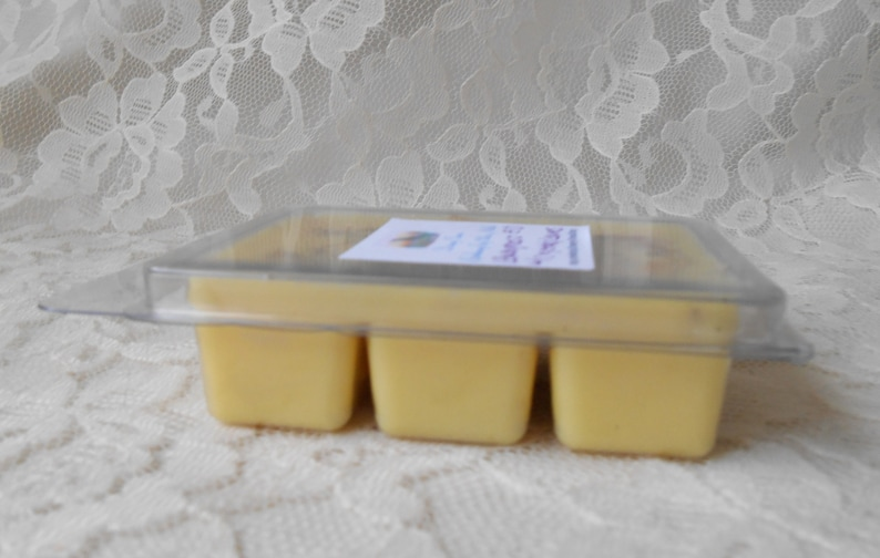 3 oz Aromatherapy Smokeless Candle Infused with Quartz Crystals /& Dried Lemongrass Lemongrass EO Soy Wax Breakaway Tart Melts in Yellow