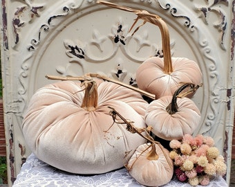 Velvet Pumpkins with Real Dried Pumpkin Stems-CHAMPAGNE BEIGE; 17 colors in six sizes. 10 percent off 3 or 4; 20 percent off 5 or more.