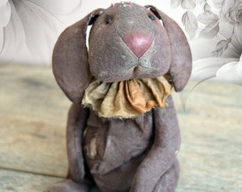 Sima. teddy rabbit