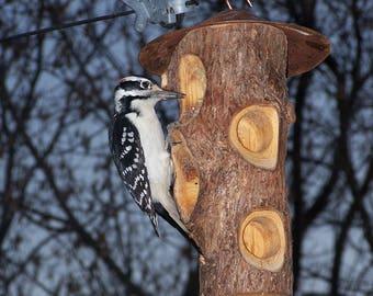 Feeder tallow, wood, cedar, copper, outdoor decoration, bird, seeds, Garden bird feeder