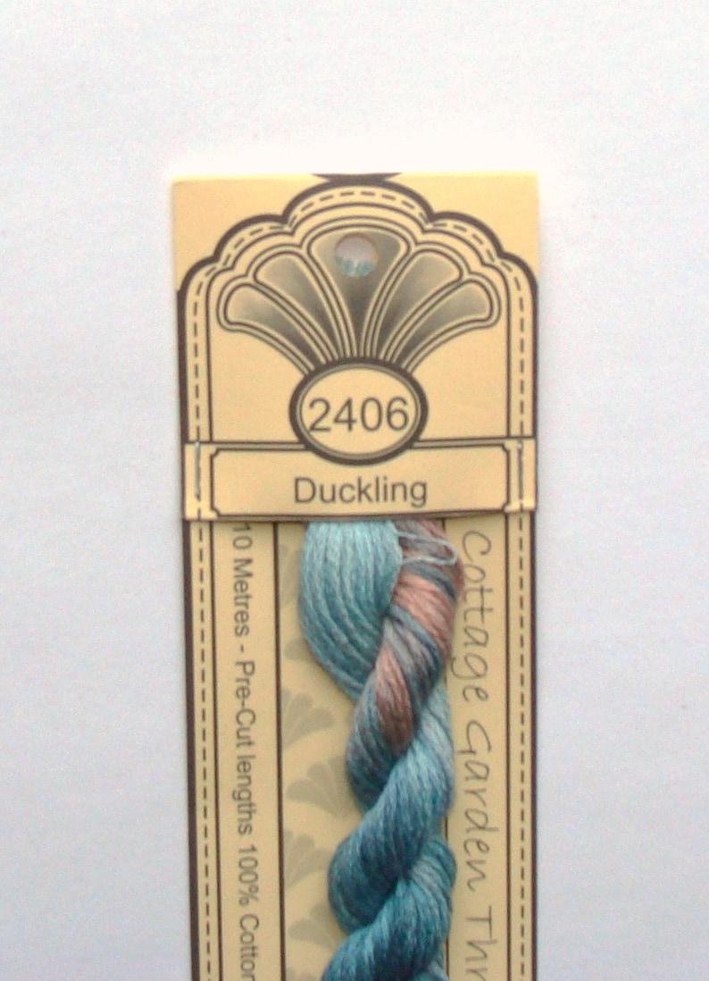 Cottage Garden Thread 2406 Duckling