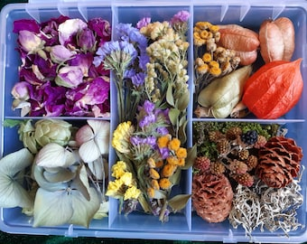 Botanical boxes Dried flowers Leaves Wild and garden plants