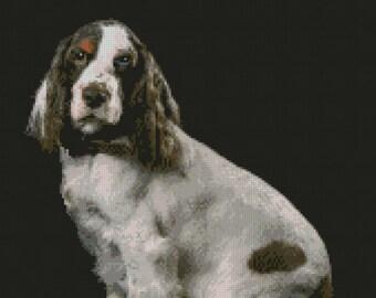 """D2408 10/"""" x 9/"""" Border Collie Puppy Dog 25.5cm x 22.7cm"""