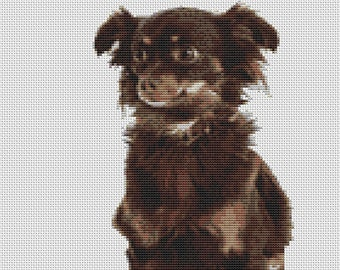 """Chihuahua long haired dog Counted Cross Stitch Kit 10"""" x 14.5"""" (25.5 cm x 37cm)"""