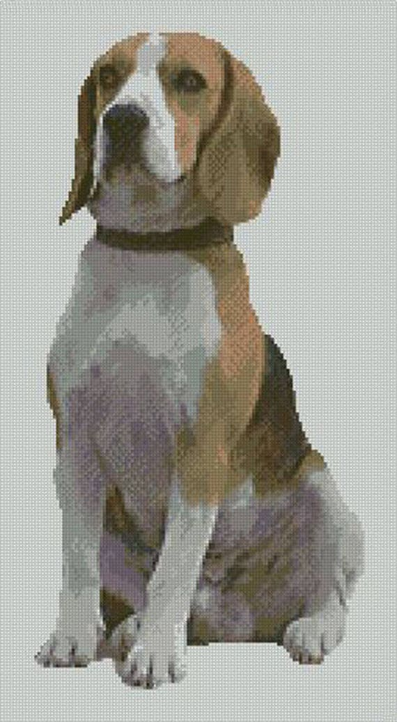 "Yorkie 4 Yorkshire Terrier Dog Counted Cross Stitch Kit 9/"" x 7/"" 23cm x 18cm"