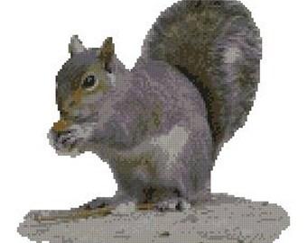 "Grey Squirrel Counted Cross Stitch Kit 10.5"" x 9.75"" 26.7cm x 24.9cm"