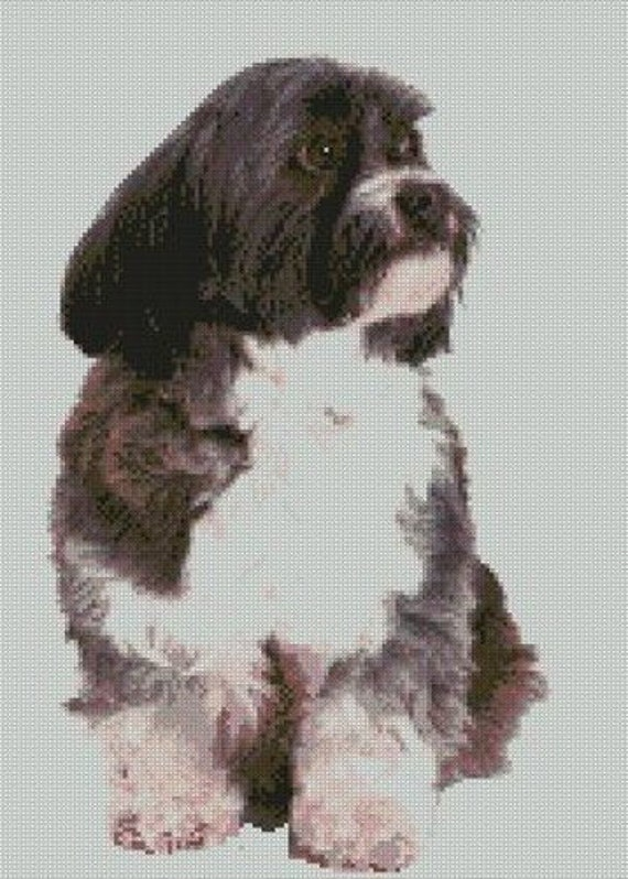 """Maltese Terrier Puppy Dog Counted Cross Stitch Kit 11/"""" x 10/"""""""