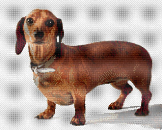 DACHSHUND SAUSAGE DOG CROSS STITCH KIT FOR BEGINNERS PATTERN CARD GIFT IDEA