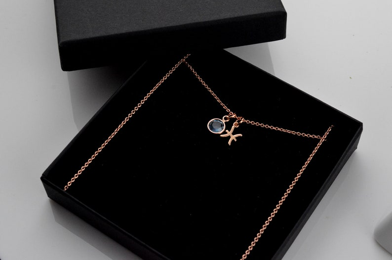 Personalised Birthday Gifts for Her Christmas Gift Birthstone Zodiac Necklace Rose Gold Jewelry Necklaces for Women,Birthstone Jewellery