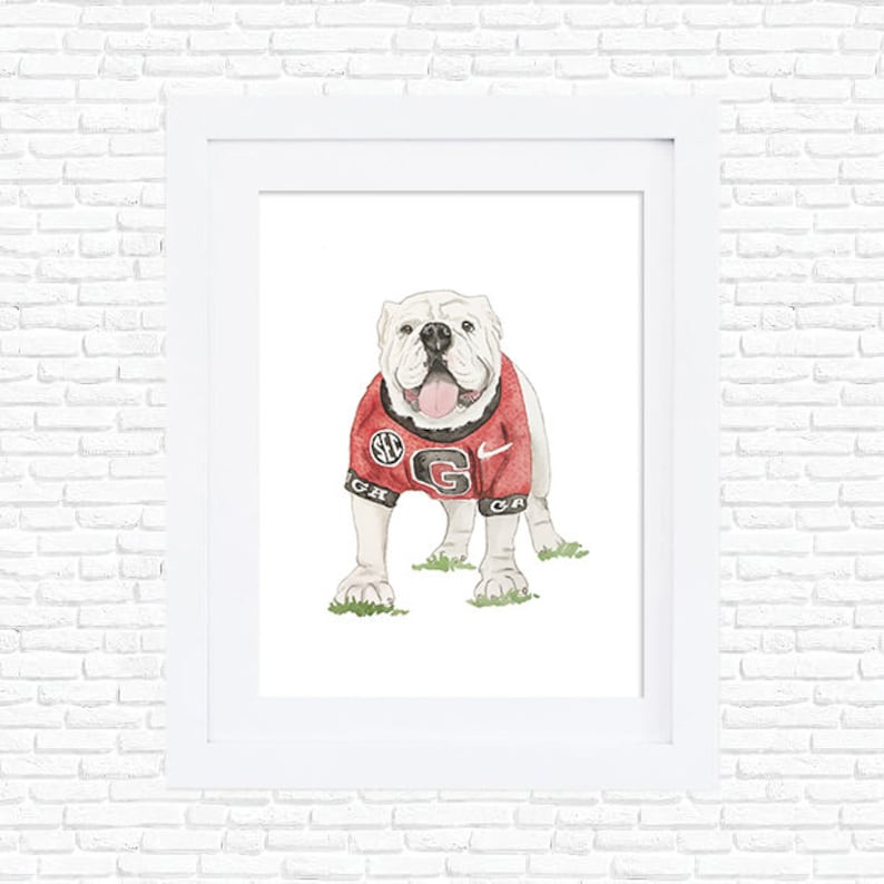 Uga Bulldog Georgia Bulldogs Athens GA Watercolor Dog Bulldog Portrait Go  Dawgs University of Georgia