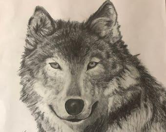Original Pencil Drawing: Wolf