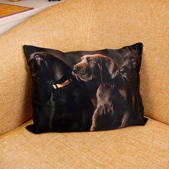 Brilliant Dog Pillow Great Dane Dog Bedroom Pillow Black Pillow Outdoor Pillow Floor Pillow Farmhouse Pillow Couch Pillow Sofa Pillow P1 1 Ncnpc Chair Design For Home Ncnpcorg