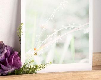 Water drop print / Floral print / Water print / nature print / plant lover gift / plant lover print / greenhouse print