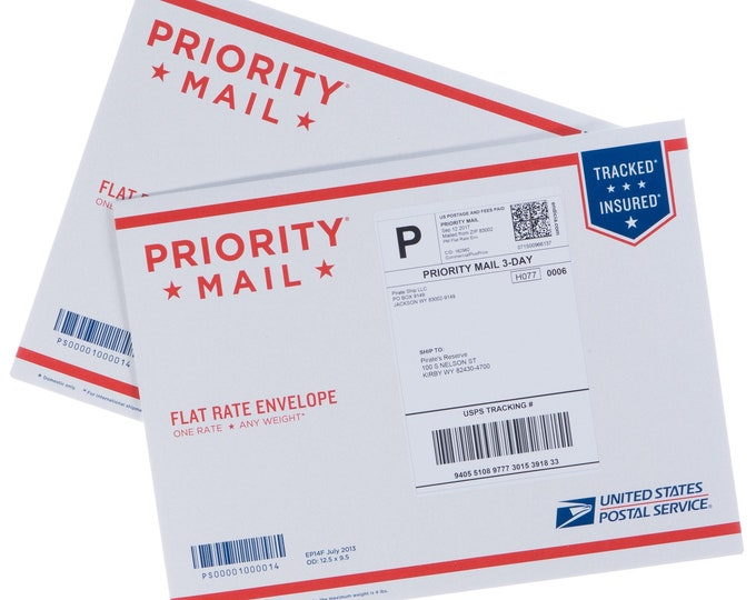 UPGRADE SHIPPING: Priority Mail Flat Rate Envelope for Mask(s)