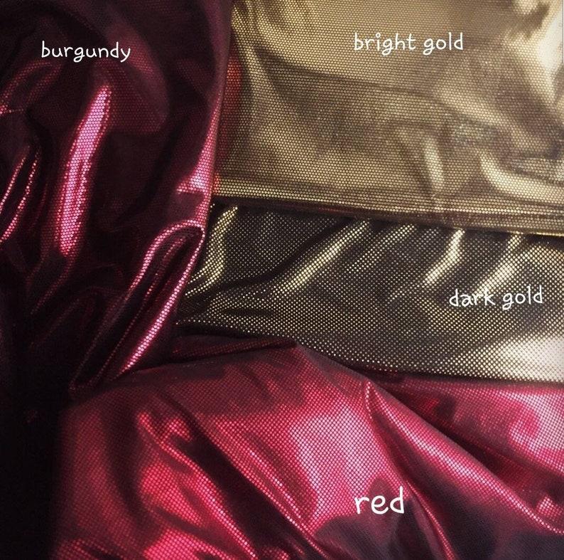 4546910448d NEW Shiny elegant metallic colour tango dress with a tail.