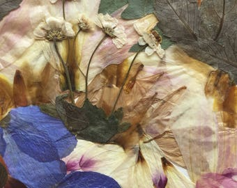 "Flower 06.17 Giclee Print 12""x18"""
