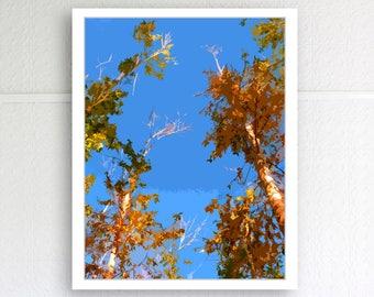 Amber autumn trees under the heavenly ocean