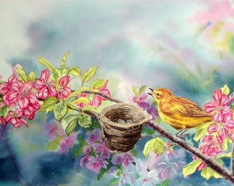 Spring song - Warbler and apple blossoms wall art