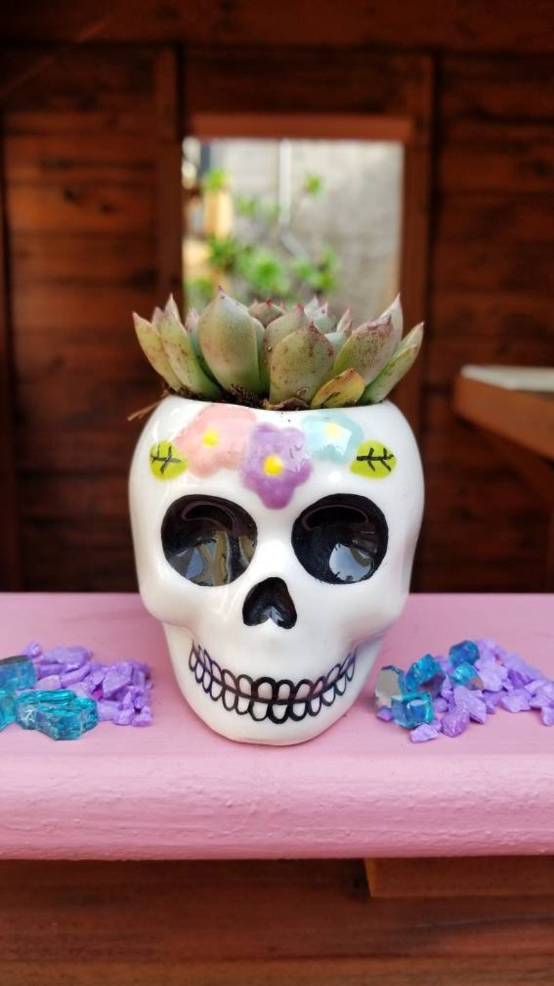 Sugar skull Ceramic planter image 0