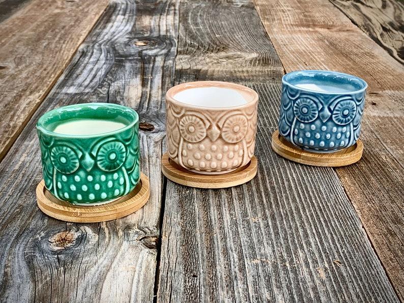 Set of 3 Glazed Ceramic Pot with Bamboo Tray/Mini Flower Pot/Succulent Owl  Pot/Air Plant Pot/Owl Planter/Flower Planter/Teacher Gift/Cactus