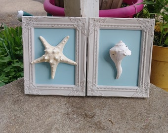 Framed Starfish and  Seashell Decor