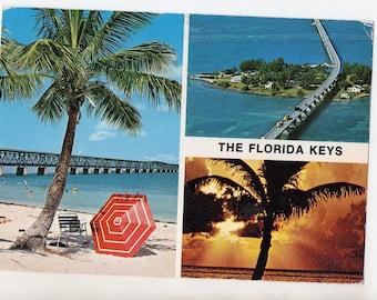 Vintage Florida Keys Postcard   FL Sunshine State Souvenir Beach Palm Trees Photograph   Travel, Tourism   Paper Ephemera