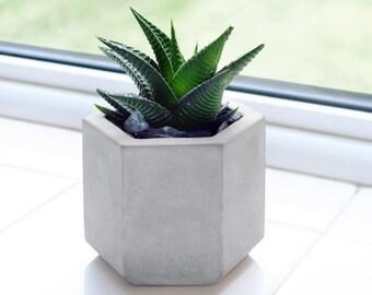 Hexagonal concrete planter - succulents cactus houseplants