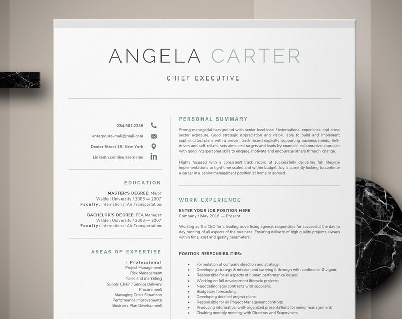 One Page Executive Resume Template Instant Download CV | Etsy