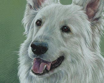 Colorful pet portrait White Swiss Shepherd Pastels Original drawing 30cm x 21cm Pastel Portrait on colored paper Gift for dog lovers