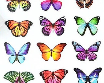 Butterfly paper sticker sheet