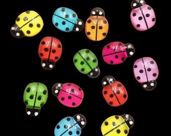 Ladybird resin cabochons, 13mm mixed colour set