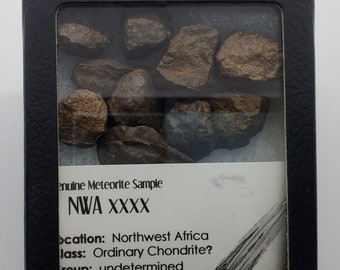Meteorites Northwest Africa (NWA) Ordinary Chondrite Unclassified Sahara Desert Meditation