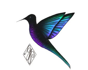 Humingbird colibri print