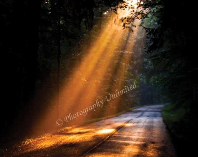 Sun's Rays On Country Road