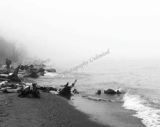 Foggy Day on Lake Erie Shore