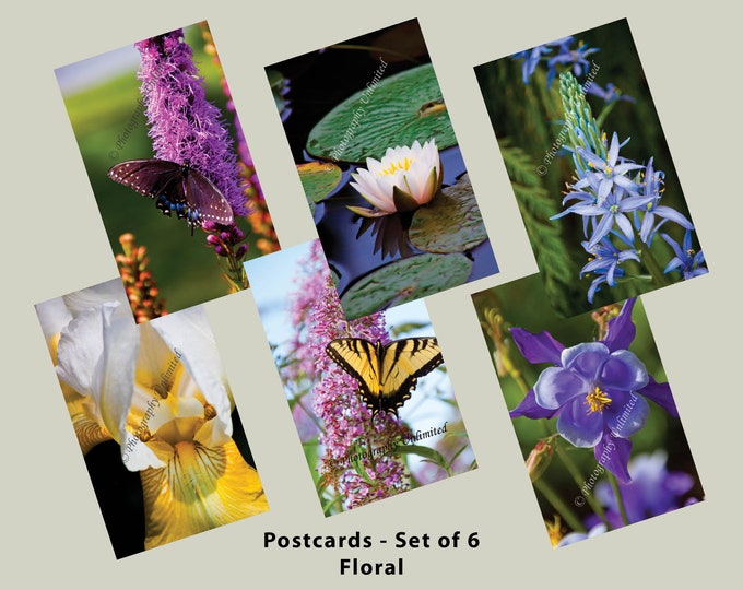 Postcards 4x6 inch - Floral Design (Set of 6)