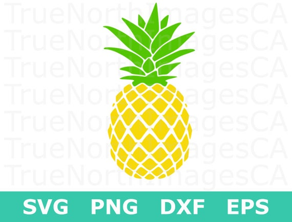 pineapple svg pineapple clipart pineapple silhouette etsy rh etsy com pineapple clip art with and rll initials pineapple clip art monogram free