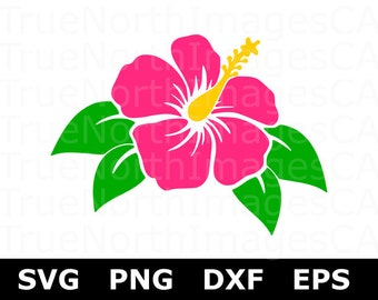 Hibiscus Clip art / Hibiscus SVG / Hibiscus Flower SVG / Flower SVG / Flower Clipart / Hawaiian Flower svg / svg Files for Cricut