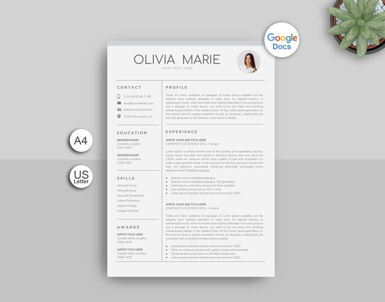 Google Docs Resume Template Professional Creative For