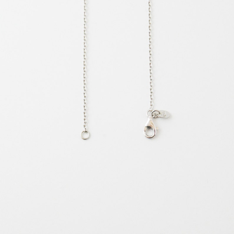 Long Silver Chain/Brand name/Necklace image 0