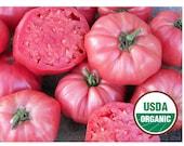Sudduth 39 s Pink Brandywine Tomato Seed - 25 Seeds