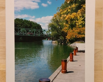 Fall Colors Blank Greeting Card