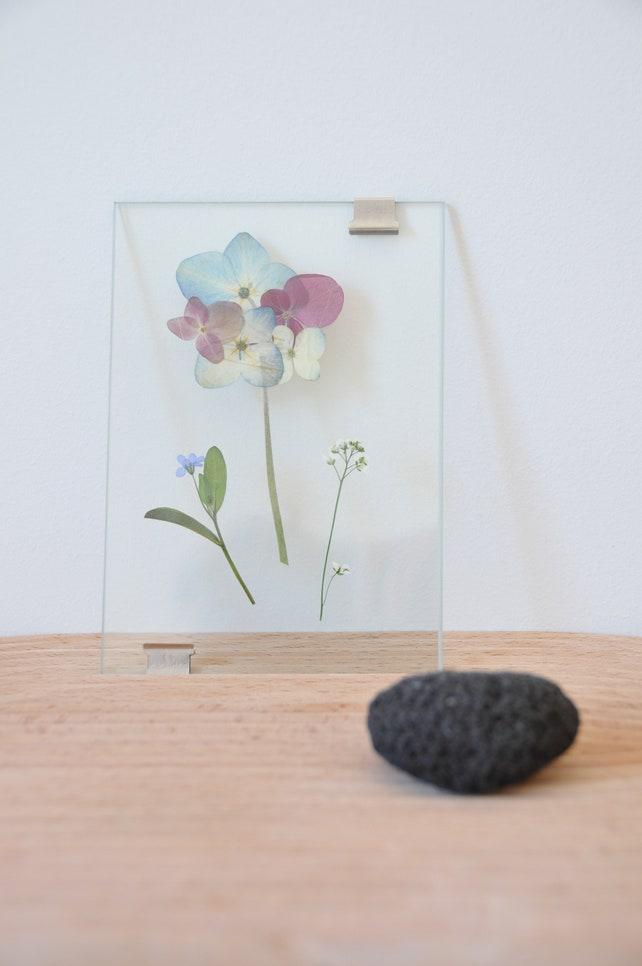 Rahmen-Herbarium des gepressten Blumen | Etsy