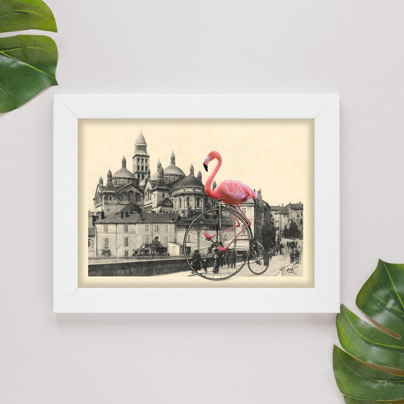 photomontage. Postcard A6 curiosities in P\u00e9rigord pink Flamingo in vintage bicycle in front of the Cathedral Saint front in P\u00e9rigueux